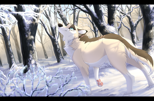 Icy Morning by Nightrizer