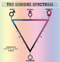 The Gender Spectrum Scale by Chrystall-Bawll