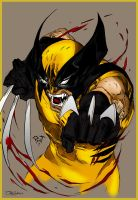 Wolverine_Coloring by 3xcrazy