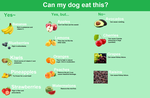 What can your dog eat? (Fruit) by BlizzardHaze