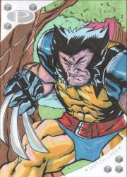 wolverine by 5000WATTS