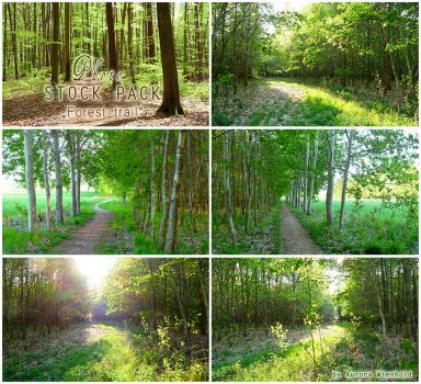 Forest trail - PHOTO STOCK PACK by RoryonaRainbow
