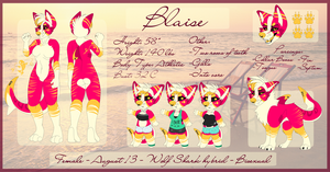 Current Blaise Ref by Flame-Expression