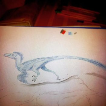 Raptor (sin terminar) by MadHatterMuscaria