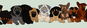 GSD DTA Adopts! by CascadiaRiverKennels