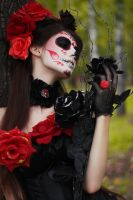Day of the Dead by LetzteSchatten-stock