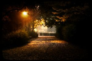 I see the light by kumArts