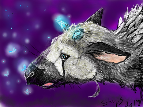 Trico With Buterflys by shymuse2014