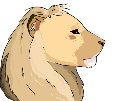 Lion by Flubbuble