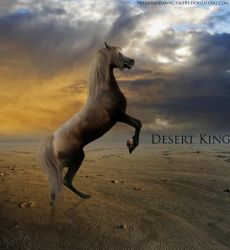 Desert King by YoungBlueBell