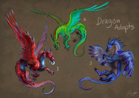Dragon Adopts|Auction| CLOSED! thank you! by Creature-Designer