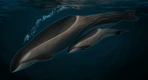 Deep Sea Orca by The7thSea