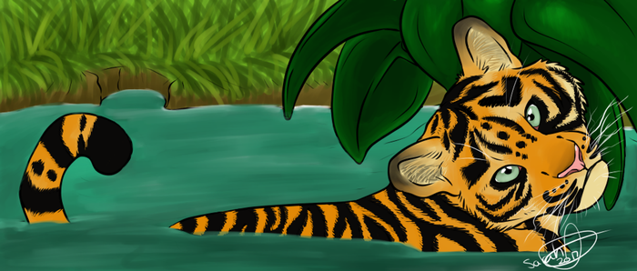 A Tigers Oasis by swankie