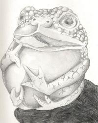 The Most Foolish Frog... by arkenum