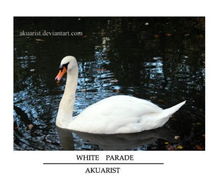 White Parade by akuarist