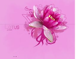 Lotus Wallpaper by UberzErO