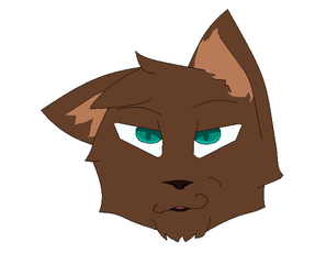 Me (realistically) as a cat by Herr-Shtick