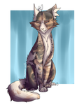 Comm.6 - Sora by Oceans-Will