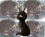 Aaron,my 3nd cat by norngirl