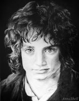 Frodo Baggins by AnnaShell