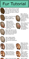 Fur Tutorial by TheMauston