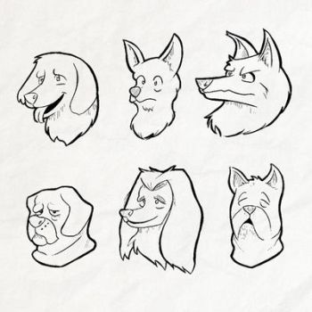 Several Dogs by AlbertoV