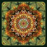 Flower of Life Fractal Mandala Green