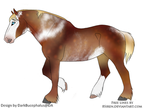 Bucky The horse by Ride4Life-Stables