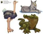 Adorable Animals by concept-creature