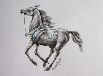 Blue gallop by Paedophryne