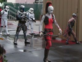 Star Wars Disney Parade by Pendragon-Photo