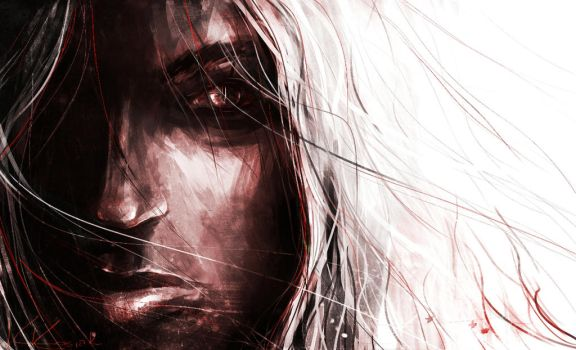 The Witcher by Catherine-PL