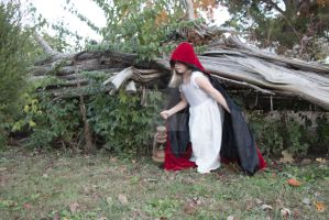 Little red riding hood Premium Stock 2 by HigherSeeking