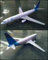 Garuda Indonesia 737-800 Papercraft by rillocrafter21