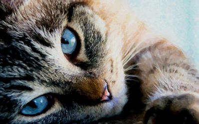 Ole Blue Eyes by montag451