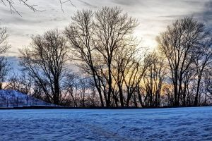 Winter dusk by sequential