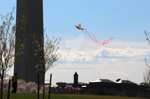 Kite Flying on the National Mall - Washington, DC by squirrelismyfriend