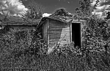 The old grey house by FurBabyPhotography