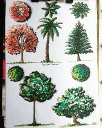 Studying trees by Linaia