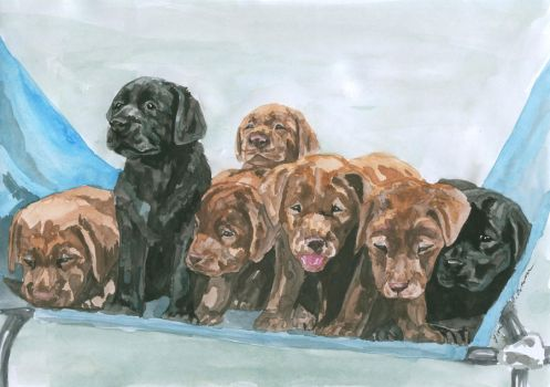 labrador puppies by DaphneBlake