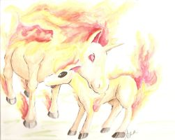 Rapidash and her Colt by Ama-Encyclopika
