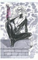 Black Cat Auction Piece by grover80