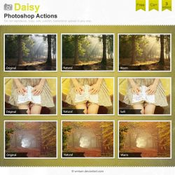 Daisy Photoshop Actions by Wnison