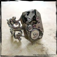 Steampunk Industrial Ring by SoulCatcher06