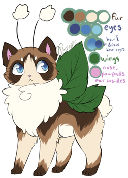 [Approved] MYO Mothcat - Hare's-tail Cottongrass by Furreon