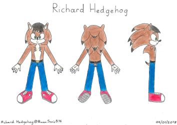 Richard Spiketail Hedgehog: Reference(Mobian/2018) by BoomSonic514