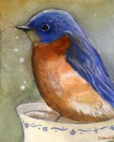 Bluebird in teacup by BlueBirdie