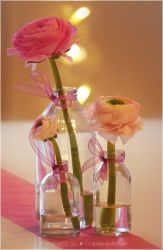 Bottled flower arrangement idea by Nachtfokus