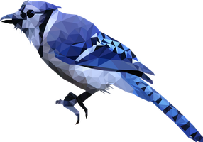 -- Blue bird -- by 0l-Fox-l0
