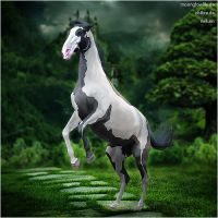 HEE Horse Avatar - Jellos Fantology by Vellum-Graphics